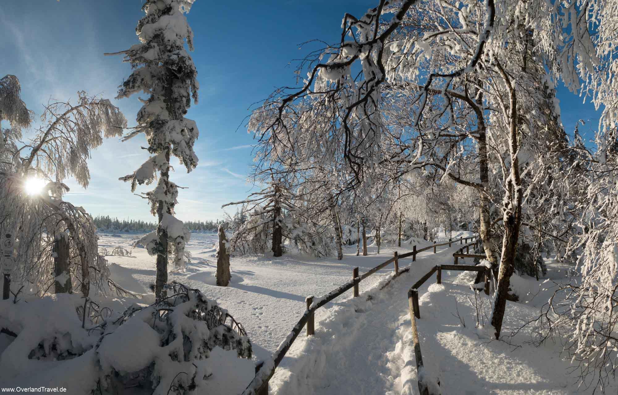 Black Forest winter mountain biking Panorama