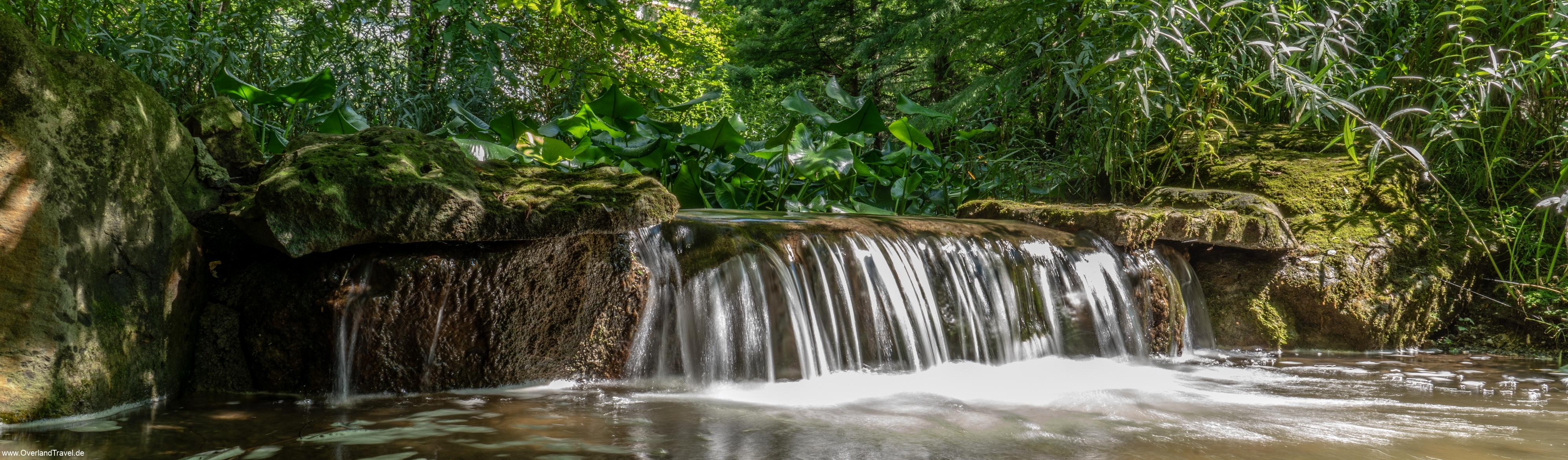 Trauttmansdorff gardens 2. place in the  International Garden Photographer of the Year 2018  Award