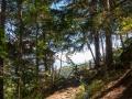 Hiking along a waal path  in the Trentino Alto Adige area