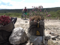 Camino-del-norte-mtb-hiking-shoes