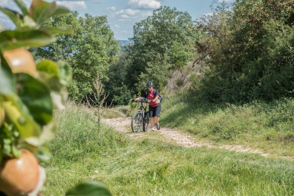 Camino Santiago Mtb Via Gebennensis Steep Uphill