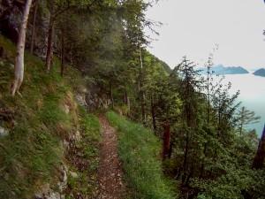 Südseite am Vierwaldstädtesee mtb Level 3 Trail