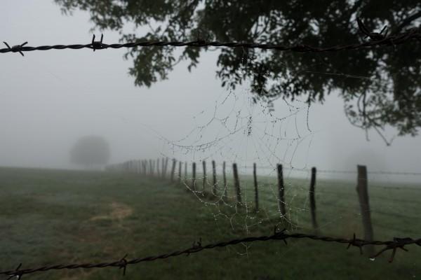 Camino Santiago Mtb Via Podiensis Fog