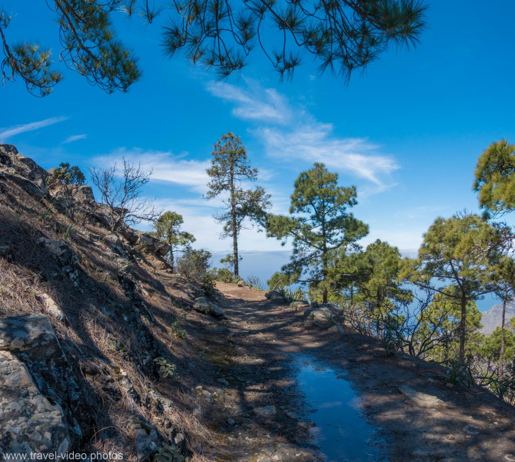 Mountain Bike Gran Canaria single trail