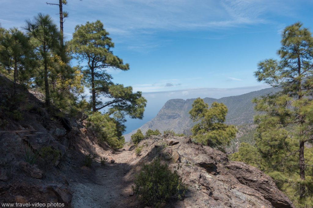 Mountain Bike Gran Canaria single trail